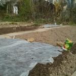 Garten im April nach Aussaat