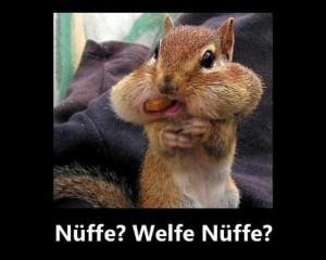 nueffe-300x240.jpg